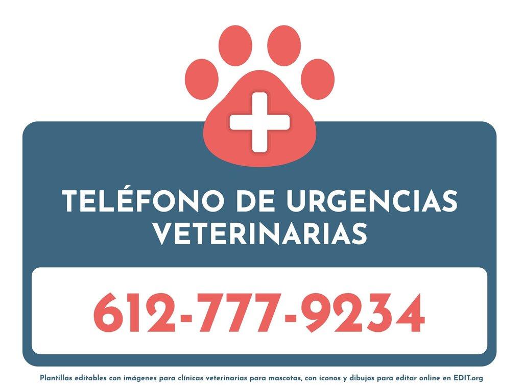 Editar una imagen de veterinaria