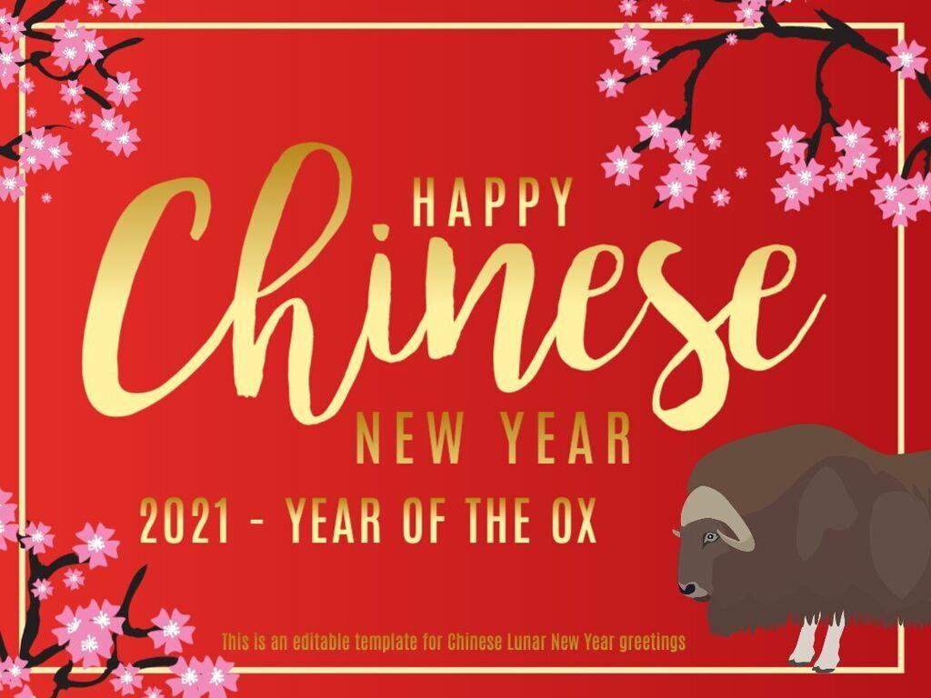 Chinese New Year custom templates