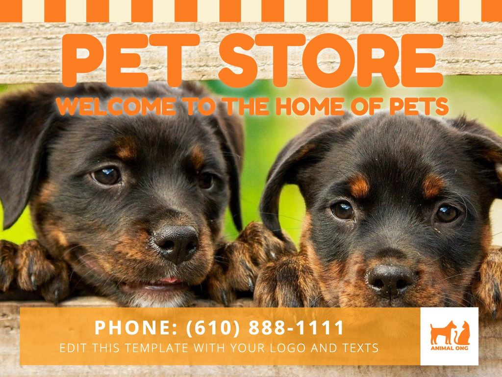 Editable posters for a pet store