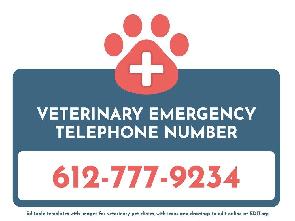 Edit a veterinary image