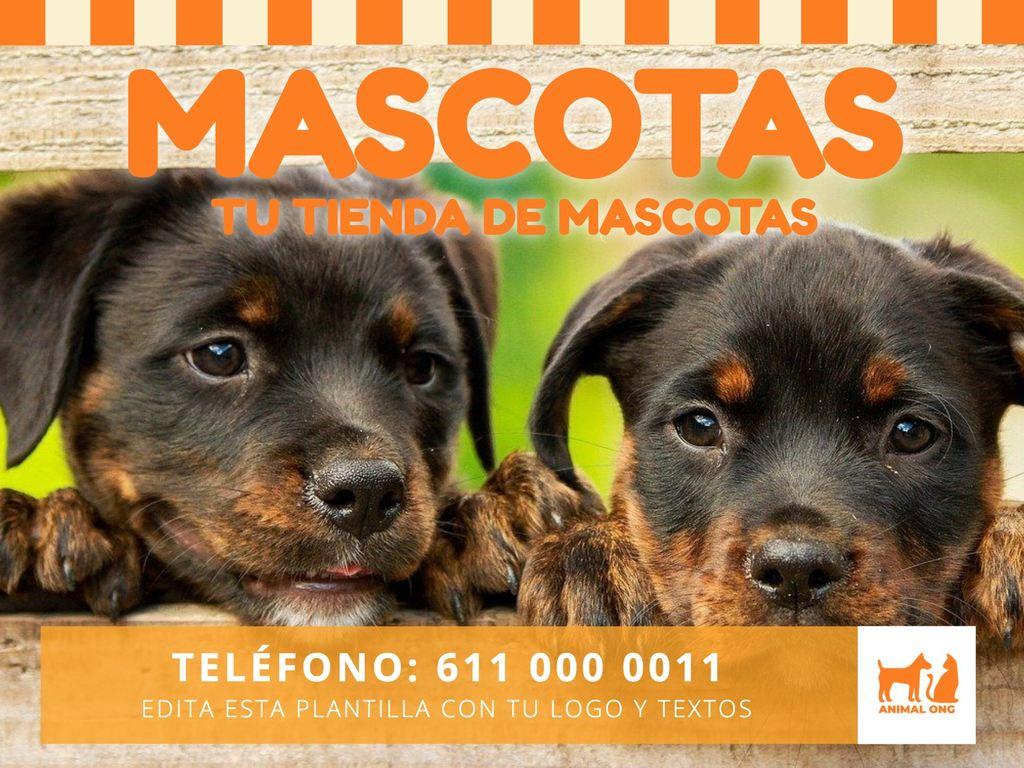 Edita un cartel para mascotas