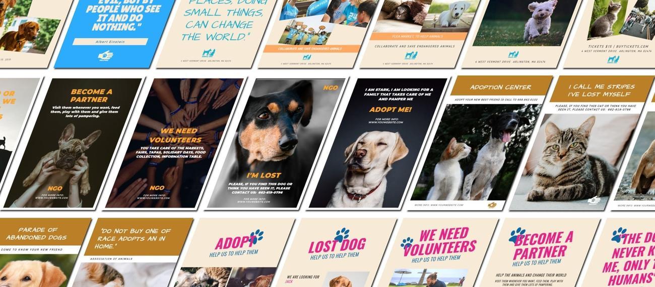 Crea diseños para tu ONG gratis